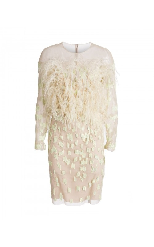 Feather Embroidered Mini Dress